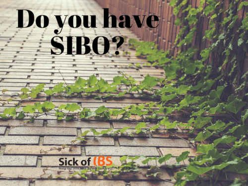Do you have SIBO or Candida?
