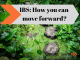 How to move forward with your IBS